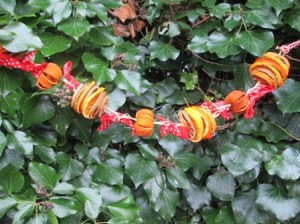 fruit garland 1