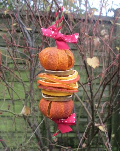 dried fruit decorations